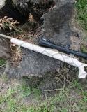 Christina Clark Pink Giraffe Rifle-sm