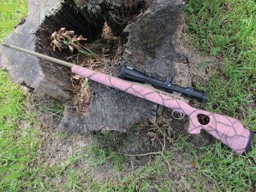 Christina Clark Pink Giraffe Rifle